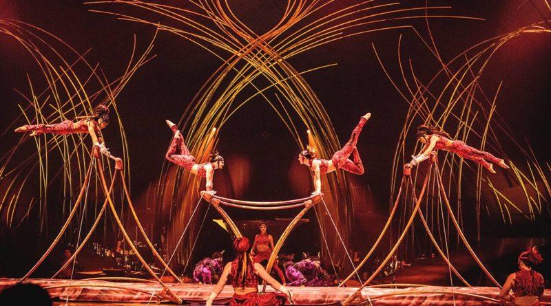 Le Cirque du Soleil in tour con Amaluna: la poetica della femminilità